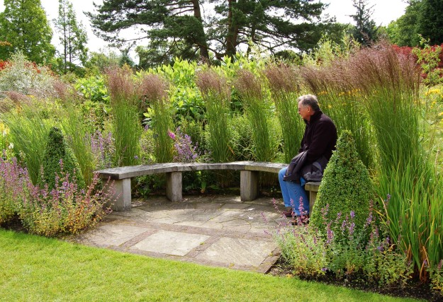 The perfect bench at RHS Harlow Carr.