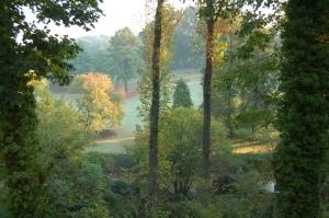 View from kitchen window, autumn 2010.