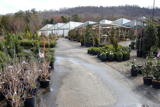 to garden plants!