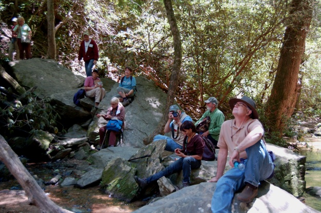 A small part of the group at Yellow Branch Falls, with special thanks to leaders Ette and Bill.