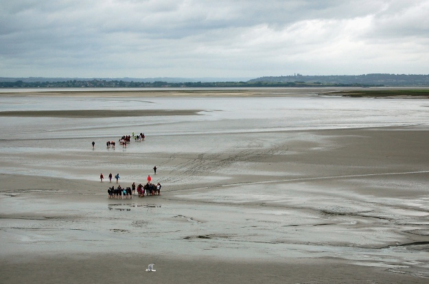 School groups exploring the tidal basin.