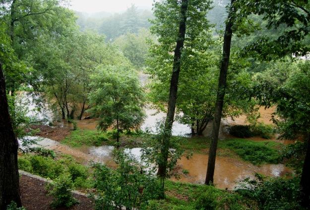 Reedy River engulfs the garden, 8/6/13.