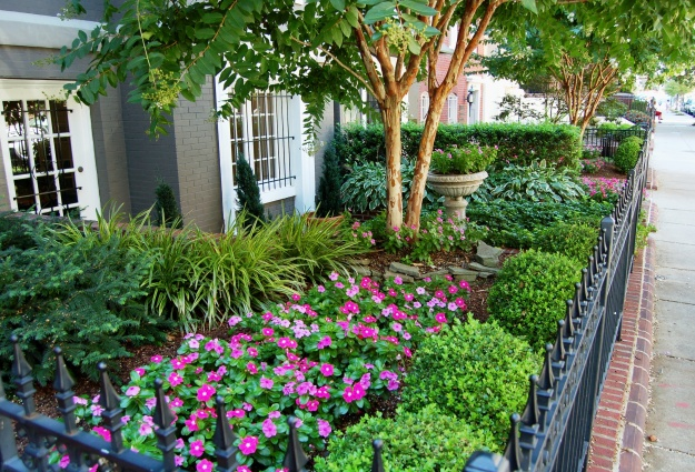 N Street neighbor featuring colorful vinca with lush foliage.