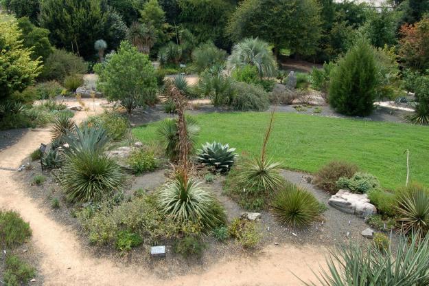 JCRA Xeric Garden