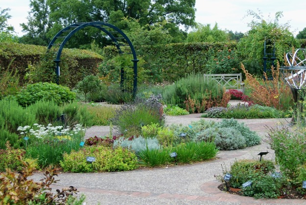 A view of the stunning herb garden, still buzzing with bees and other insects.