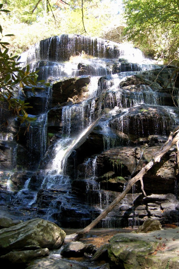Yellow Branch Falls with 50-feet of cascading water that stretches 75-feet wide.