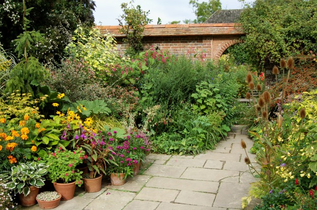 The exuberant and ever-changing Wall Garden.