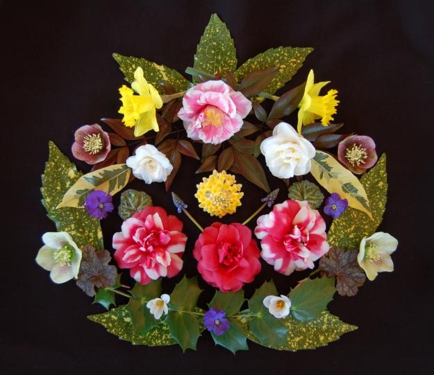 I fiori e le foglie del mio giardino.  (The flowers and foliage of my garden.)
