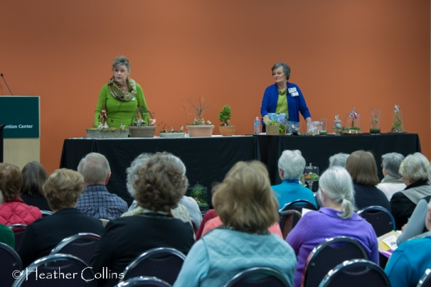 Jean and Terry share their secrets on fairy gardens and terrariums.