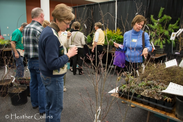Plant vendors, such as Specialty Ornamentals, made shopping a competitive sport.