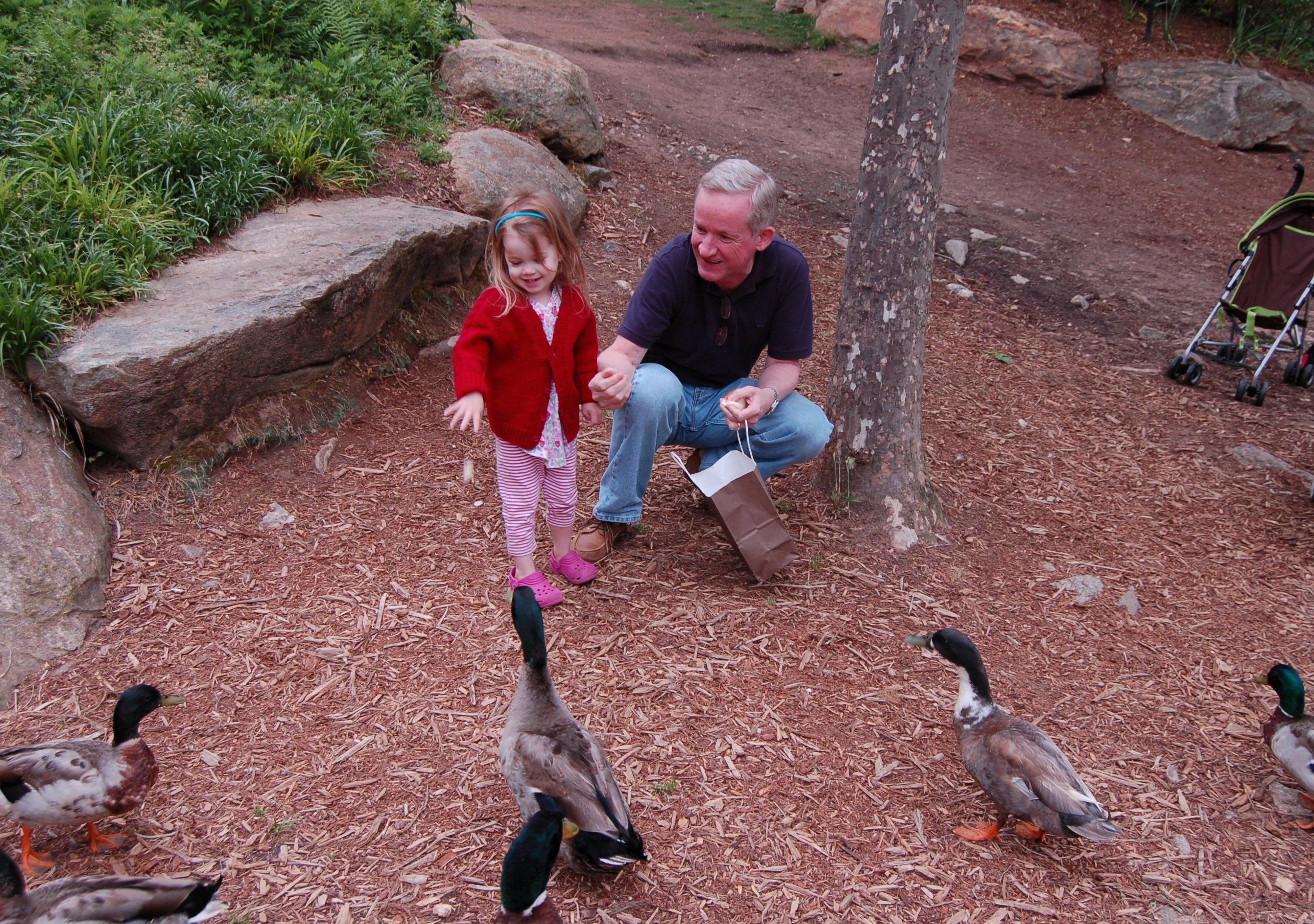 Feeding the ducks was