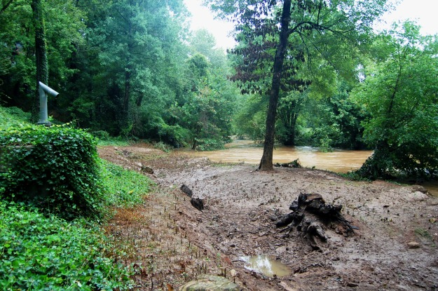 Looking upstream across the neighbor's property, which has lost another large section of riverbank.