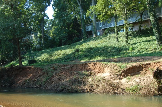 Recent erosion of the riverbank.