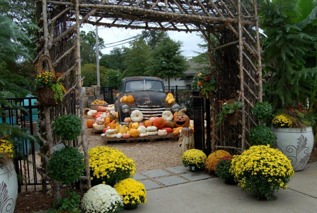 Need a gourd or two?