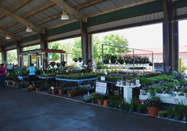 Heaven on earth...inside the plant shed at the Raleigh Farmers Market.