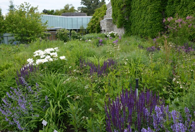 Toronto Botanical Garden's Entry Garden Walk