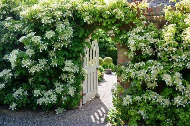 The eye-catching gate into the Courtyard Garden was made on the Isle of Wight.