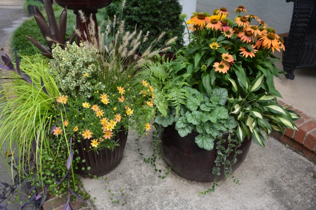 September porch pots.