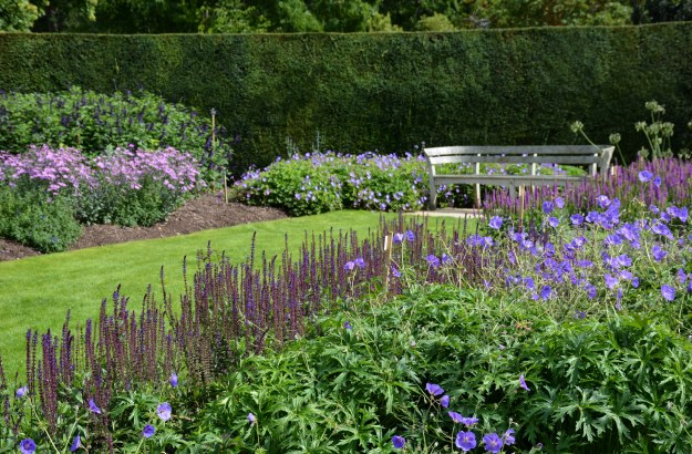 Purple bed of the Golden Jubilee Garden.